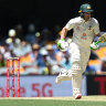 Pleasure and Paine: Aussie skipper has filled the post admirably