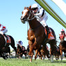Pippie lacks fresh speed as favourites go under at Caulfield