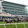 Victoria Racing Club to test twilight racing, starting Saturday