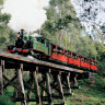 'They were betrayed': Government to apologise to Puffing Billy victims