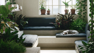 The London base of PSLab with mattress-style cushions to encourage downtime – especially for Wilf the resident dog.