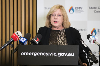 Police and Emergency Services Minister Lisa Neville took leave in February as her condition flared up.
