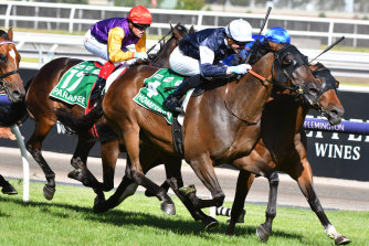 Victorian races will be spectator-free until at least Sunday night.