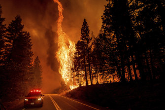 Flames leap from trees as the Dixie Fire crosses highway 89 north of Greenville in California.