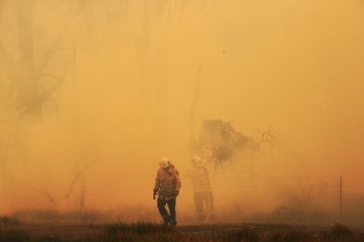 Smoke from the Green Wattle Creek blaze engulfs firefighters at the Inghams Bargo Chicken farm at Tahmoor on Friday.