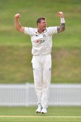 James Pattinson celebrates a wicket.