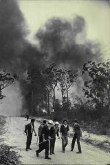 A retreat as flames advance down Davies Avenue, Springwood. November 29, 1968.