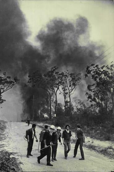 A retreat as flames advance down Davies Avenue, Springwood. November 29, 1968.