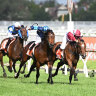 Trainers call for $9.5 million boost to Victorian races