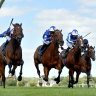 First international horse nominated for Cox Plate