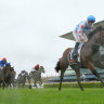 Trainers turn attention to week of work before rescheduled Golden Slipper
