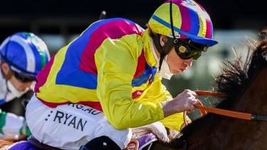 Brock Ryan will pilot Finally Realise again at Kensington on Wednesday, after an unlucky run in his last outing.