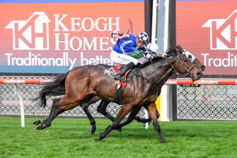Jockey Billy Egan was fined for whipping Plein Ciel too many times in a dead heat at Moonee Valley.