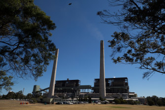 AGL is moving to build a new energy hub in the Hunter Valley to replace the aging Liddell coal-fired power plant when it closes.