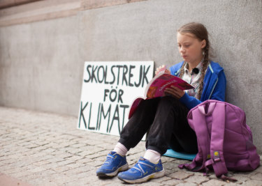 Greta Thunberg, 15, who protests outside the Swedish Parliament every Friday.