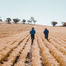Multinationals, farmers take emissions targets into their own hands