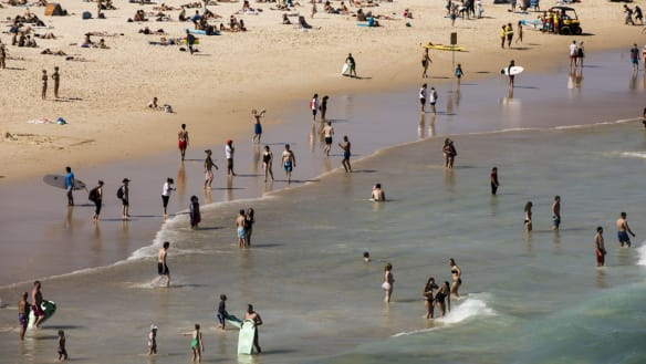 Man critical after being pulled from water at south end of Bondi beach
