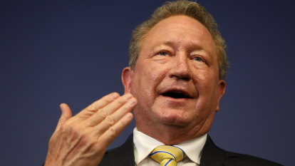 Battery battle: nickel miner picks Twiggy Forrest's 'superior' offer in race with BHP