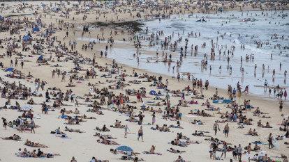 Sydney's decade: Bigger, wealthier, denser and crankier