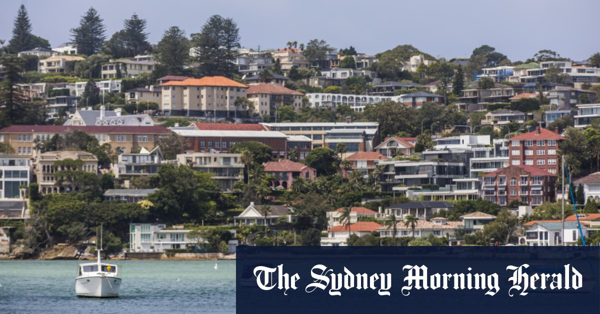 Housing investors to pick up slack as first home buyers retreat: AFG – The Sydney Morning Herald