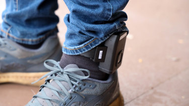 GPS tracking devices could increase rates of vigilantism, the Queensland government has been warned.