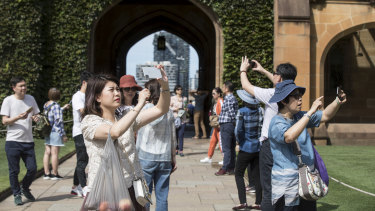 Chinese visitors in the main quadrangle at Sydney University earlier this year.