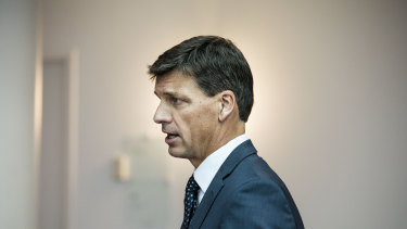 Angus Taylor threatens energy retailers with small twig.