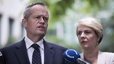 Opposition leader Bill Shorten and Deputy Opposition Leader Tanya Plibersek have ruled out a conscience vote for Labor MPs.
