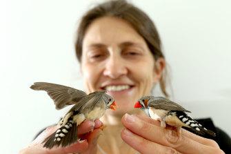 Dr Mylene Mariette with zebra finches.