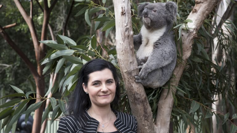 Professor Rebecca Johnson, who jointly led the research team that cracked the koala genome, with Archie at Featherdale Wildlife Park at Doonside.
