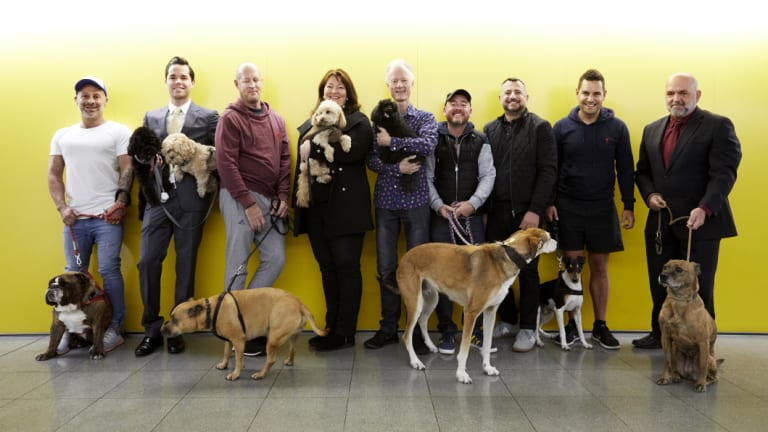 """The Altair """"dog squad"""", from left, Johnny Davies and his bulldog Romeo, James Garwood with Poppy and Chelsea, Nic Middenway and his staffy Sammy, Anna Shepherd and Mambo, Alex Deravin and his toy poodle Gaston, Paul Pede and Giovanni Rizzo with Eddy, Alex Greenwich and his rescue dog Max and building manager Mario Caruana with Beatrice."""