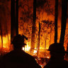 Australia's summer of bushfires has also charred the political landscape.