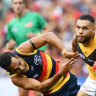 Aggressive Hawthorn continues domination of Adelaide
