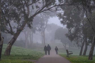 The Merri Creek trail on a winter morning