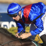 'You need a good one to win at Randwick': Holt's high hopes for Lost And Running