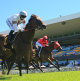 Noble pursuit of winners benefits from Price hike at sales