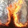 NSW bushfire leaves people 'unaccounted for' as police hunt possible arsonist