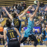 Southside Flyers to target defence