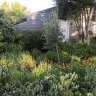 Percolate, don't parody: an architect's guide to gardening from memory
