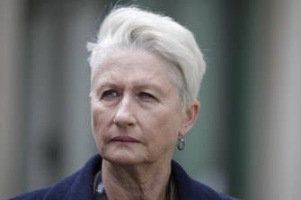 Dr Kerryn Phelps has announced she will not run against Sydney lord mayor Clover Moore in the upcoming council election.