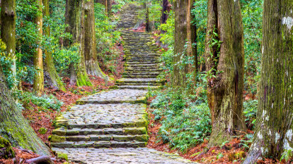 Melbourne woman dies after falling from a cliff in Japan