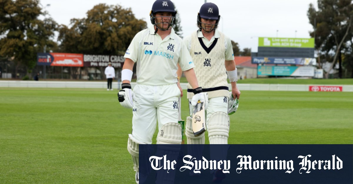 Pucovski and Harris break Waugh twins' Sheffield Shield record – Sydney Morning Herald