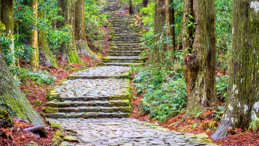 A section of the Kumano Kodo trail, a sacred trail in Nachi, Wakayama, Japan.