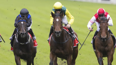 Jay Ford (yellow cap) rides Adelong to victory in the At Sea Stakes.