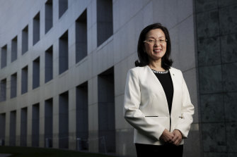 Gladys Liu never gave in, despite relentless political attacks from inside and out.