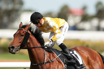 Jockey Andrew Adkins could be back at the races next month.
