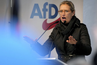 Alice Weidel, co-leader of the Alternative for Germany party.