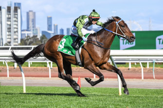 Incentivise has landed a horror barrier in the draw for the Caulfield Cup.