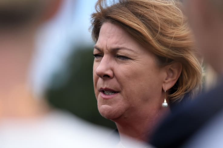 Roads Minister Melinda Pavey introduced the proposed driving laws to State Parliament on Wednesday.