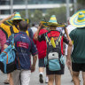 Cricket Australia still hopeful for summer of crowds